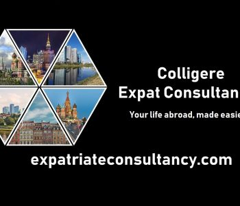 Expatriate Consultancy